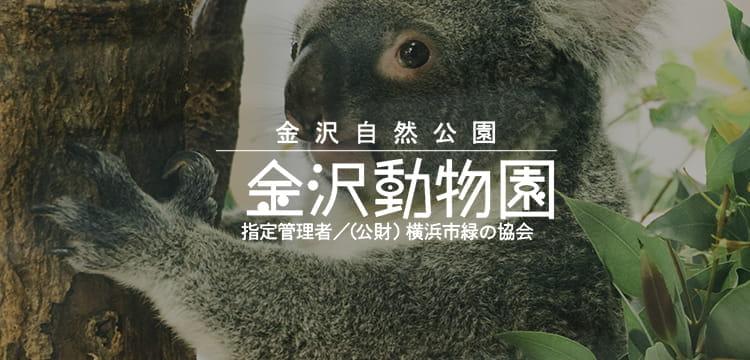 動物園 金沢 横浜市立金沢動物園の営業案内や地図アクセス情報 動物園・水族館特集
